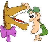 A cavalo dados não se olha os dentes